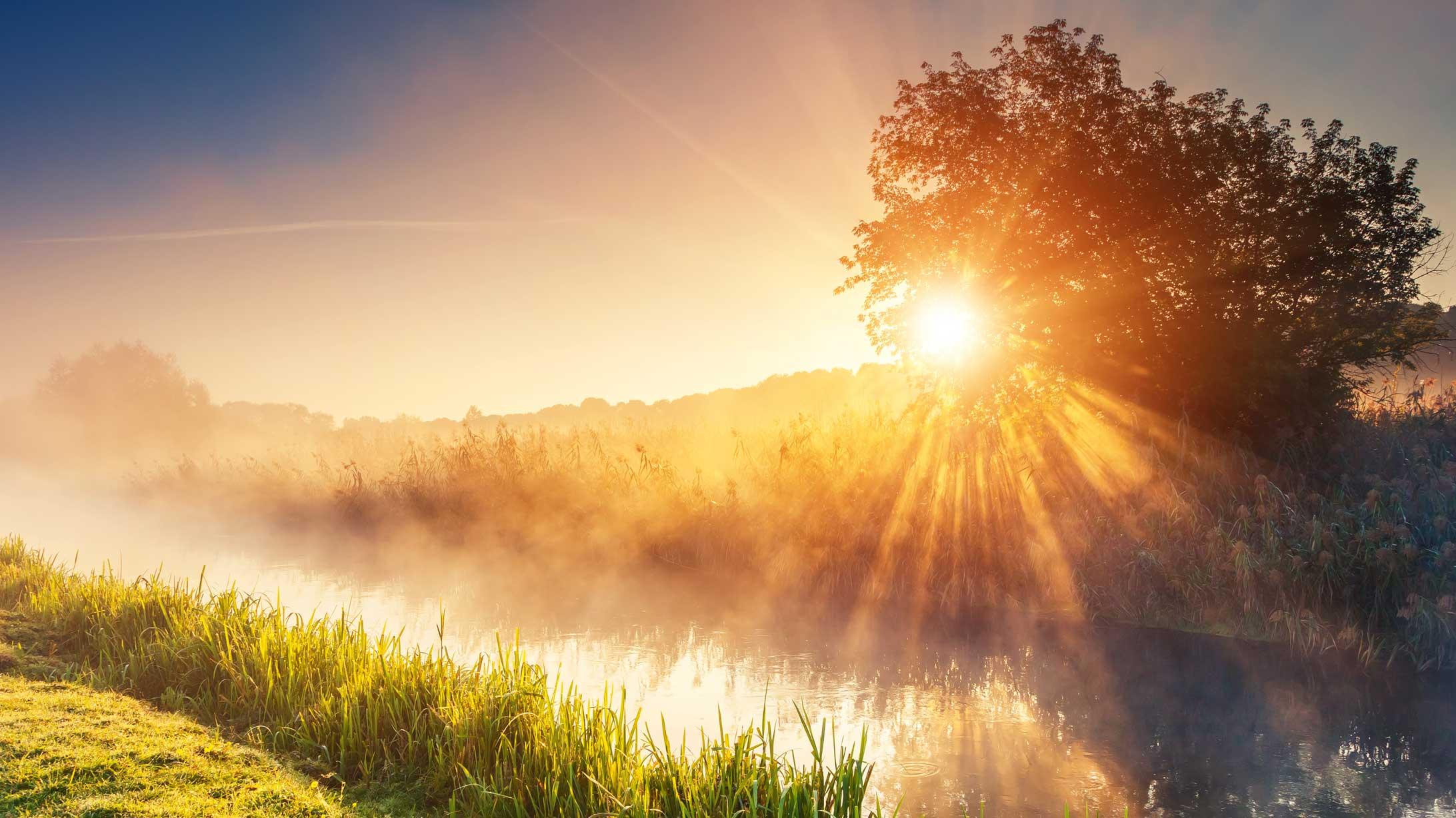 Das Bild zeigt einen Sonnenaufgang über einem Bach.