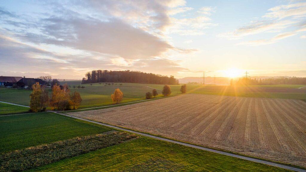Felder und Strommasten bei Sonnenuntergang.