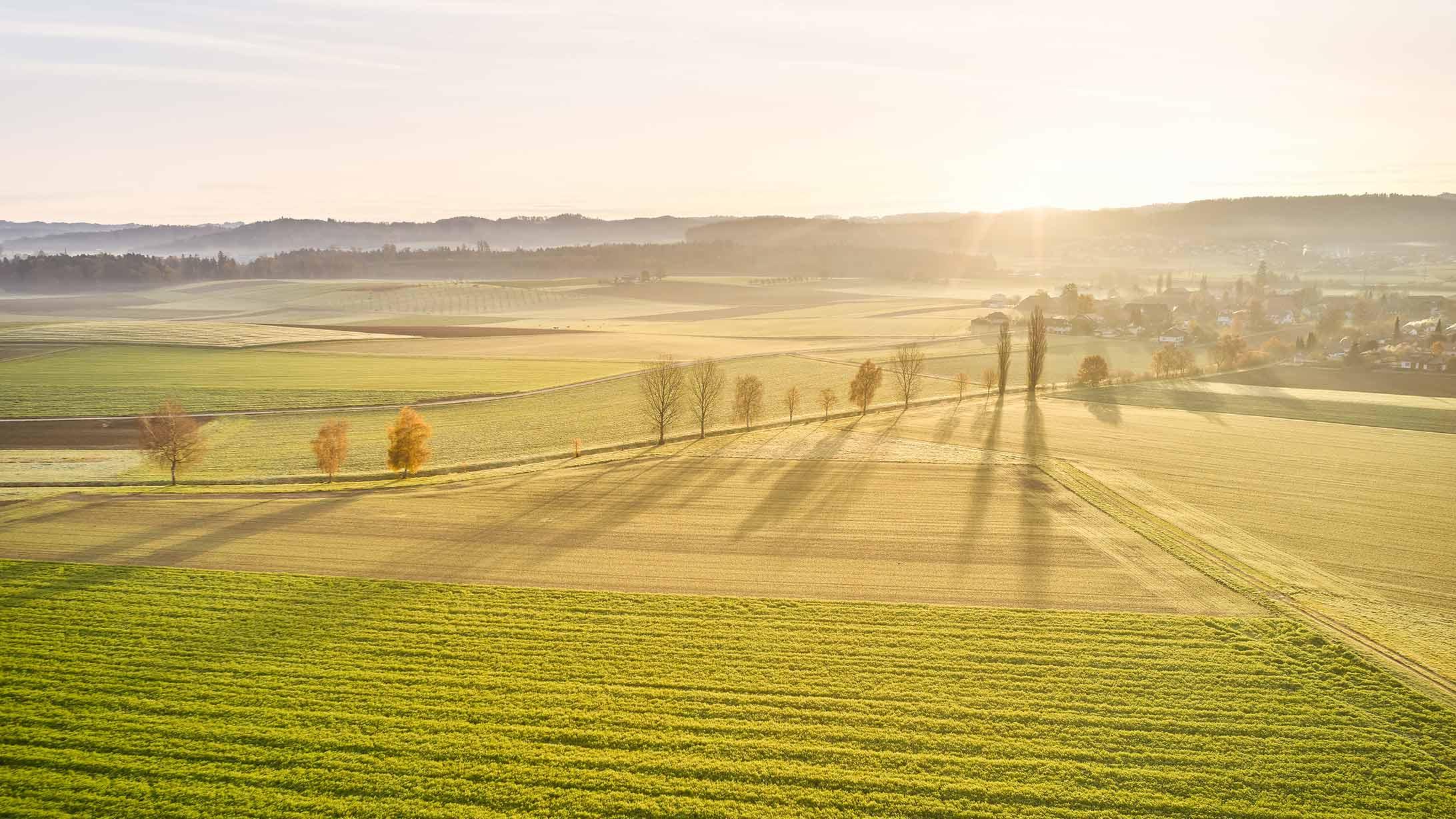 Felder und Wälder bei Sonnenschein.