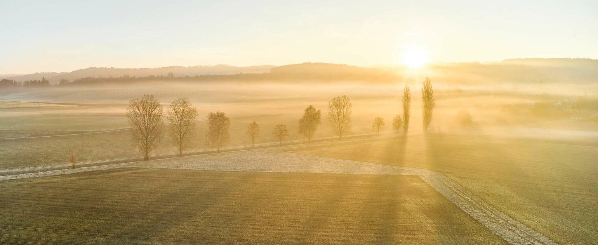 Landschaft und Sonnenaufgang in der Umgebung von Jegenstorf.